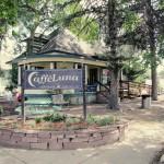 MayDae Coffee Caffe Luna Longmont